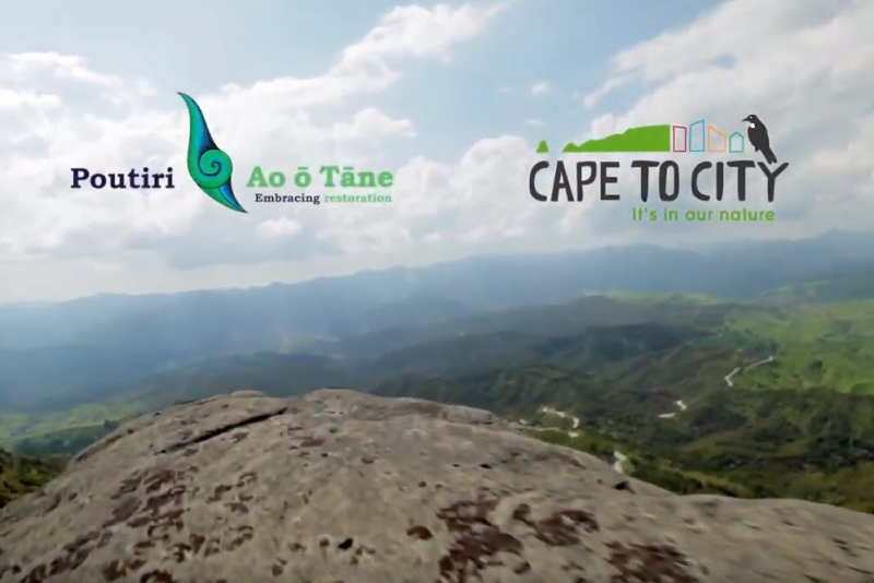 Cape to City/Poutiri Ao ō Tāne promo